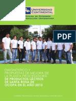Implementacion y Puesta en Funcionamiento de La Planta Procesadora de Productos Lateos de Santa Rosa de Ocopa