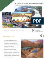 AREAS_DE_ESPECIALIZACION_DE_LA_INGENIERI.pdf