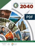 Estrategia -2040 Completa 0