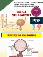 VEJIGA-NEUROGENICA