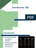 2. Estructura Del Sistema Nervioso Central (SNC)