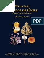 Hongos de Chile