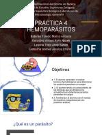 hemoparasitos practica 4 equipo 4.pptx