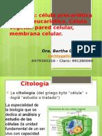 Clase 2. Citología