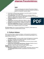 Pueblos Indígenas Precolombinos.