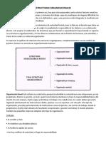 Estructuras Organizacionales Unidad 3 Ultima Parte