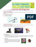 Relaciones-Biológicas-para-Tercero-de-Primaria (1).pdf