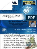 PRACTICA I-Comprension Del Cerebro- Joselin Santana