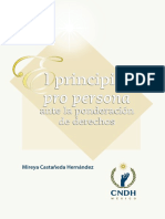 61_Principio_pro_persona_2018_.pdf