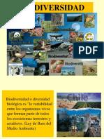 biodiversidad resumen.ppt