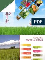 Catalogo de Vivero San José