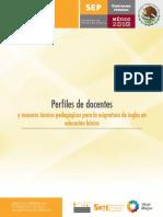 PERFILES DOCENTES-INGLES.pdf