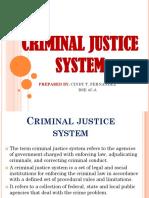 Cindy Fernandez Criminal Justice System