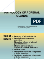 5. Pathology of Adrenal Glands.