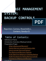 BACKUP CONTROLS IT6.pptx
