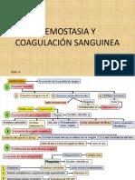 CAPITULO. 37 HEMOSTASIA Y COAGULACIÓN SANGUINEA.pptx