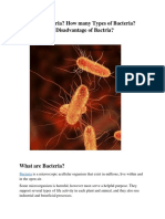 What are Bacteria? Structure and Reproduction method in Bacteria.