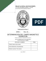 INFORME DETERMINACIÓN DEL CAMPO MAGNÉTICO TERRESTRE
