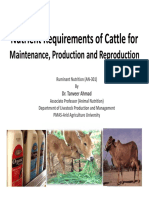 Nutrition Requirements of Ruminants