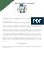 Fluxograma, organograma e cronograma