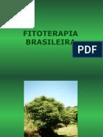Guaçatonga Aula PP