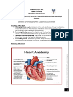 4. Cardiovascular System Anatomy & Physiology
