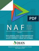 Guia Dian Naf