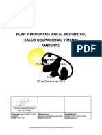 4. Plan y Programa Anual Sst