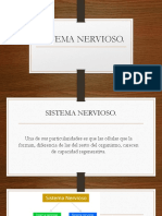 SISTEMA%20NERVIOSO (1).pptx