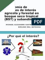 Plantas de Interés Agrícola y forestal