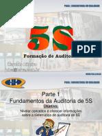 Auditores de 5S-Revisao 13