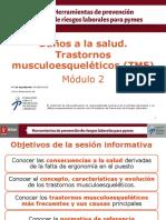 TMERT lesiones musco esqueleticas