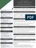Cv Juan Martin 2 PDF