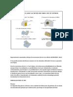 Asociaciones de Oro Con Sulfuros