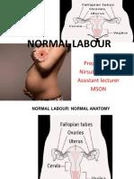Normal Labour