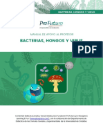 MAP Bacterias Hongos y Virus2