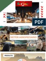 Sector Agropecuaria