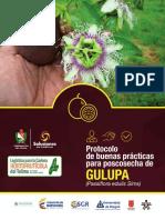 ProtocoloPoscosecha_Gulupa