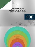 exploracion-psicopatologica (1)