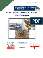 plan operativo de truchas