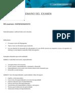 Temario examen.pdf