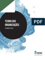 teoria das organizações
