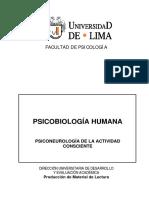 Cuaderno_Consciente.pdf