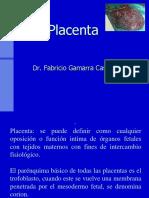 Placenta Dr Gamarra.