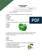 5-. Evaluación la celula
