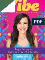Vibe Catálogo 7-2019