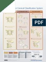 CLASIFICACION AO-CERVICAL.pdf