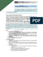 Observación Al Docente- Protocolo -