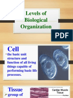 Levels of Biological Organization