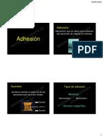 18 Adhesión.pdf